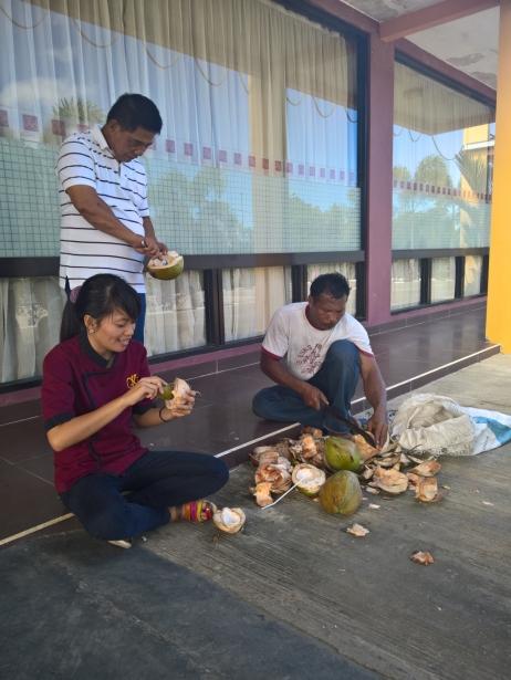 Buli_2016_03_06_coconut_proffesional